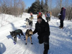 The veterinarian with a group of sled dogs